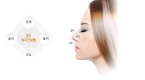 Công nghệ nâng mũi Hàn Quốc 3DS